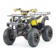 ATV-250